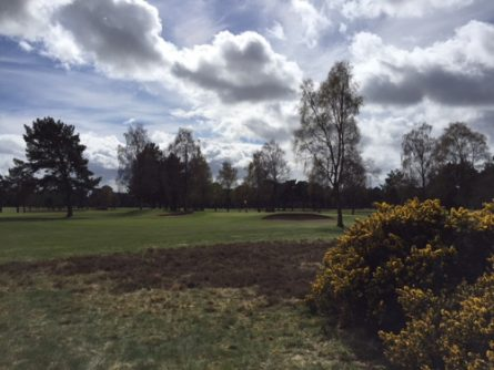 Ladybank Golf Course